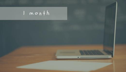 ブログを始めて1ヶ月経ったので振り返ってみる