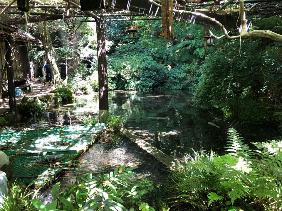 山の寺 邑居のお庭がすてき