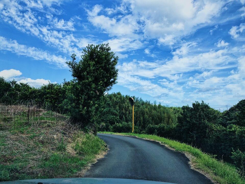 梅蓮への道がかなり狭いので対向車が来たらどうしようと思うほど