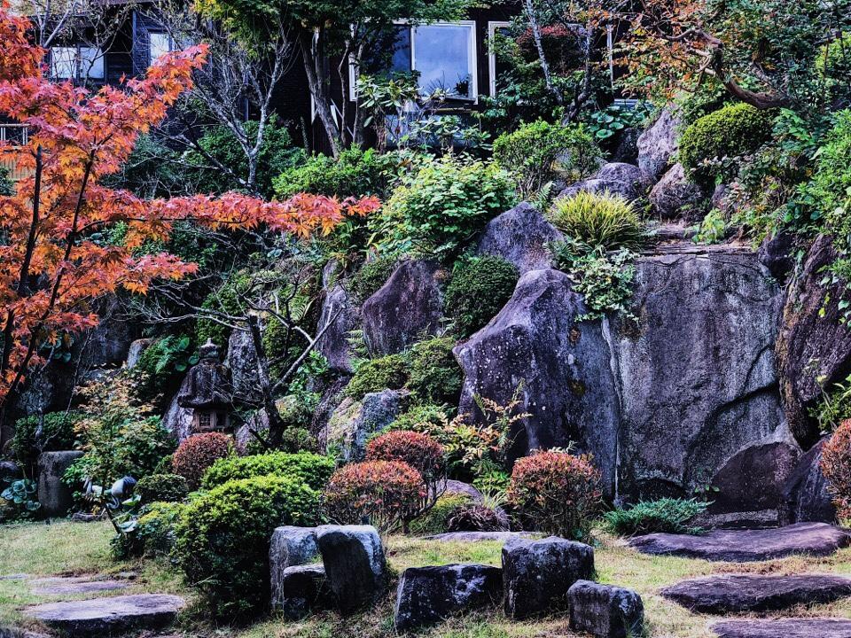 梅蓮のカウンター席から見えるお庭